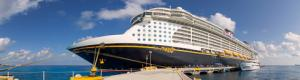 Disney Fantasy Cruising Ship Virtual Tour